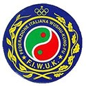 F.I.W.U.K. - Federazione Italiana Wushu Kung-Fu